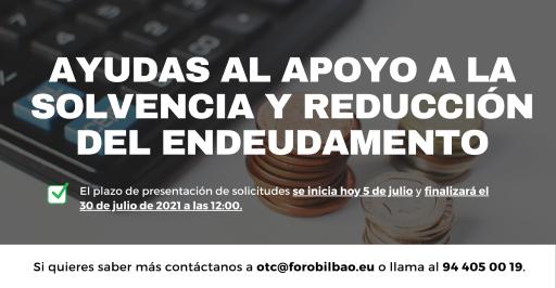 Ayudas_Endeudamiento_Solvencia